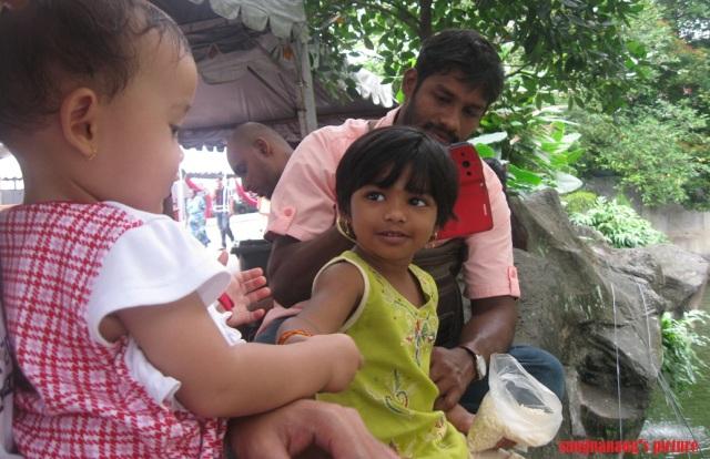 Little India2