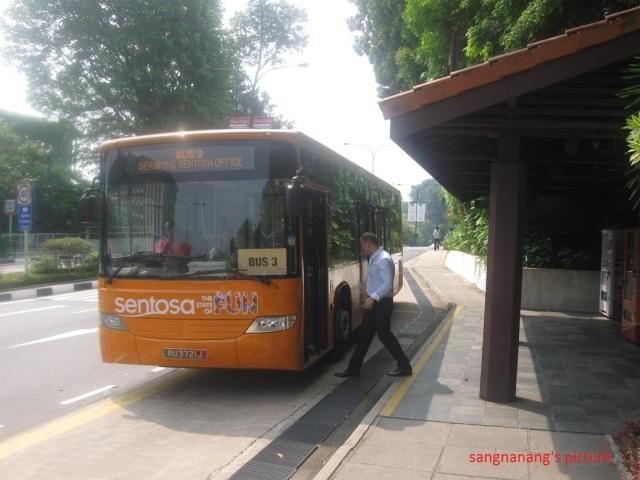 Orange Bus1