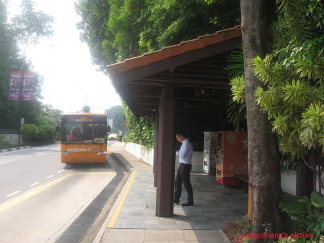 Orange Bus2