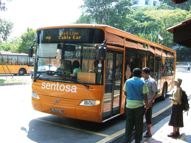 Orange Bus4
