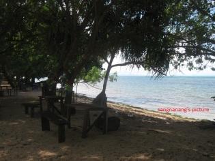 pantai-kasuari2