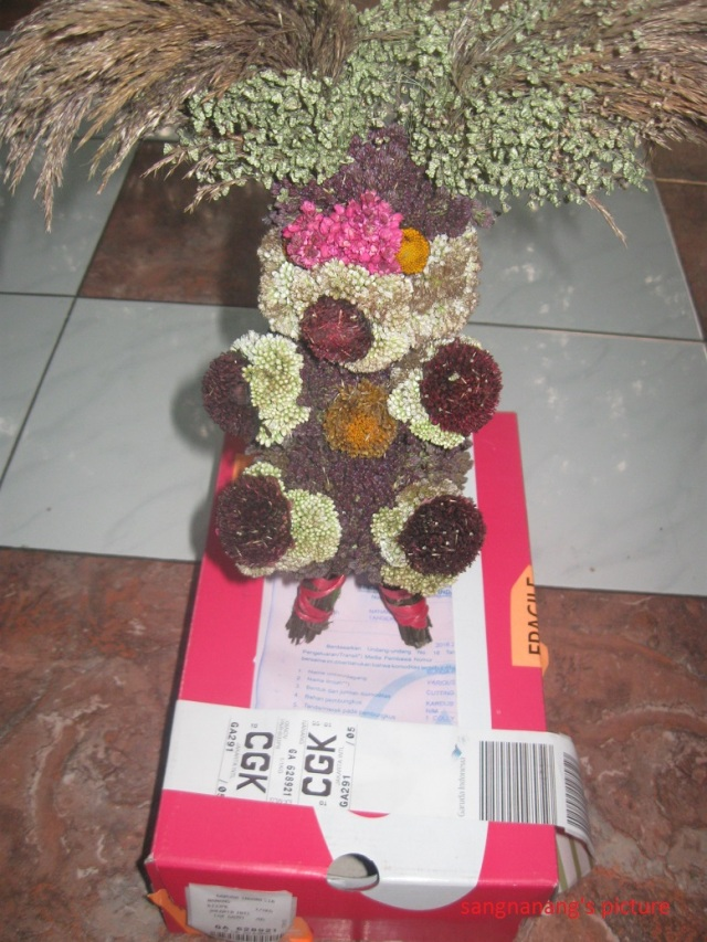 bunga-bromo