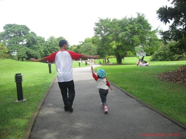 singapore-botanic-garden1