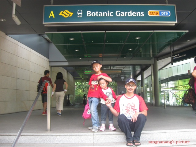 singapore-botanic-garden2