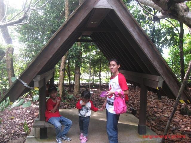 jacob-ballas-children-garden6